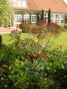 Ob es um Neuanlage, Umgestaltung oder Pflege des Gartens geht, Anfänger wie erfahrene Gartenliebhaber suchen ständig Tipps und Anregungen. Foto: BGL