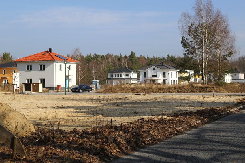 Baugrundstück im Villenpark Potsdam. © RIJ / Christina Gericke