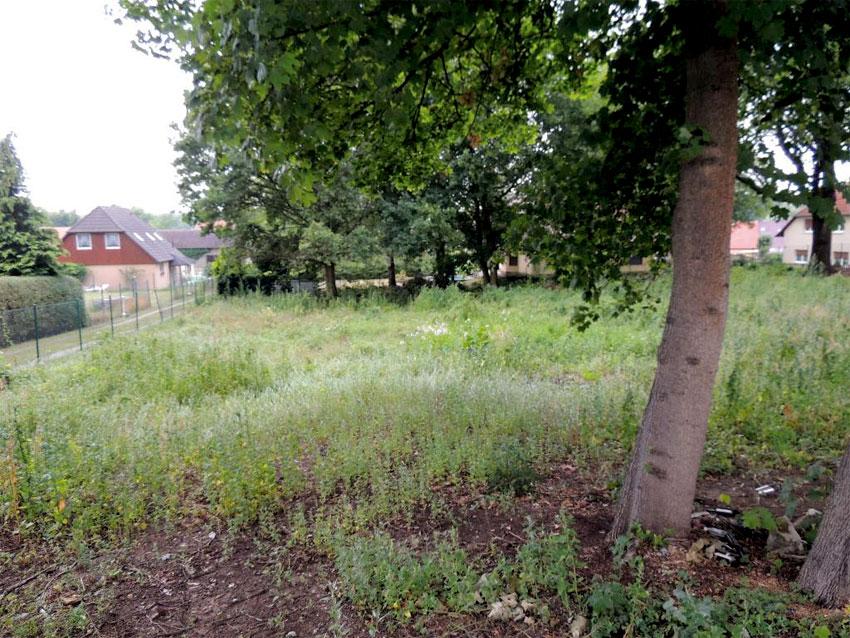 grundstück in brandenburg 1