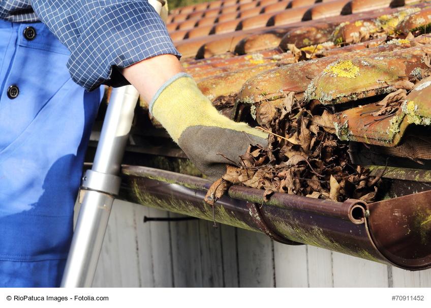Die Dachrinne sollte im Frühjahr von Laub gesäubert werden Bild: © RioPatuca Images – Fotolia.com