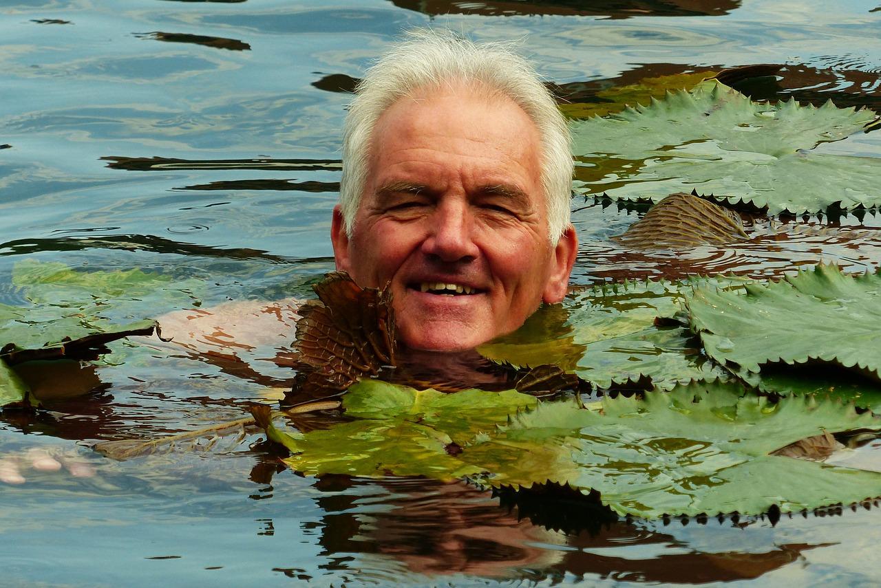 Schwimmteich selber bauen – wann lohnt es sich?