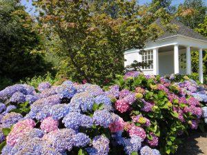 Typisch für einen Pavillon sind eine leicht erhöhte, idyllische Lage und ein von Pfählen gestütztes Dach. Die offenen Seiten gewähren freien Blick auf den Garten. © BGL