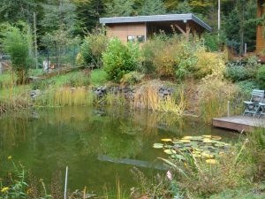 Wenn man einen Teich im Garten plant, lohnt es sich, das Gartenhaus nicht allzu weit davon entfernt bauen zu lassen. Praktischerweise lässt sich die Teichpumpe darin unterbringen.  BGL