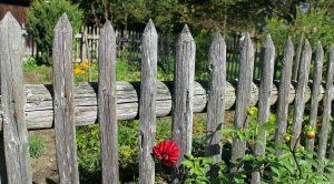 Baurecht für den Garten: Um Streit mit den Nachbarn zu vermeiden, sollte man bei der Anlage des Gartens die Spielregeln der Bauordnung und des Nachbarrechts beachten.