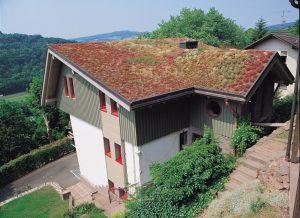 Eine Dachbegrünung ist nicht nur ein optischer Blickfang. Das Gründach leistet auch einen wichtigen Beitrag zu Entwässerung und Regenwassermanagement . Foto: Paul Bauder GmbH & Co. KG