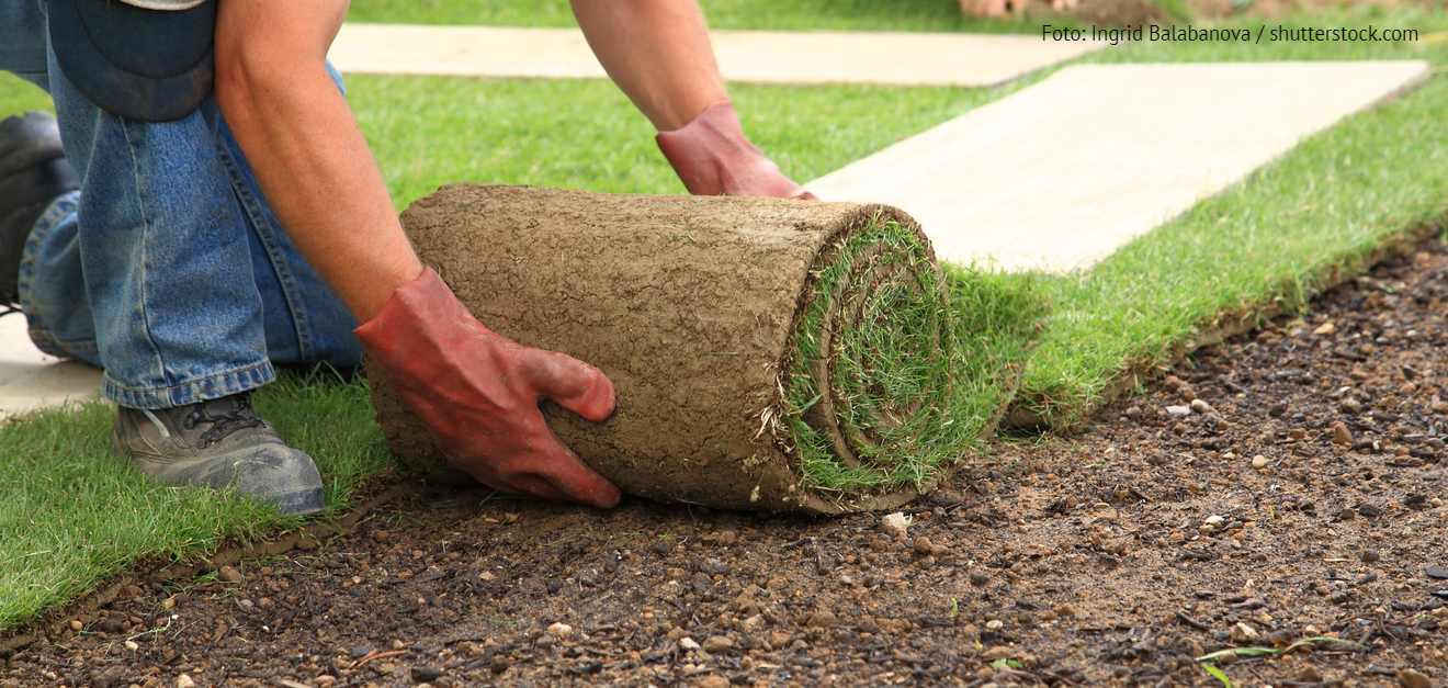 Gartengestaltung mit Rollrasen