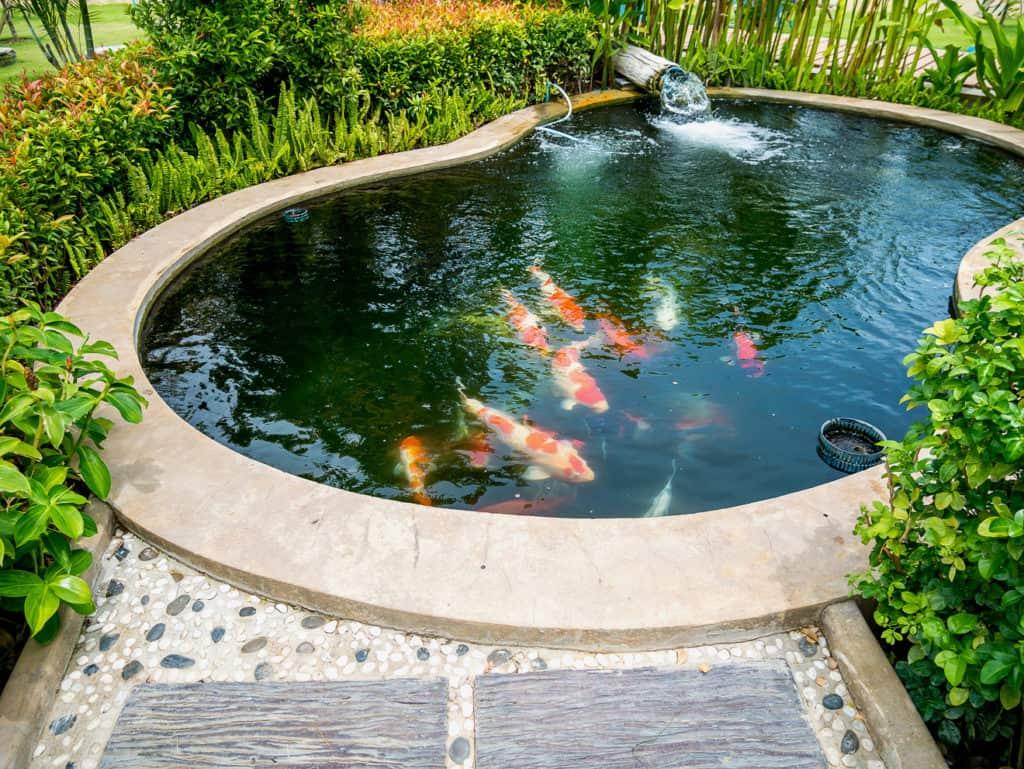 Ein Gartenteich mit Fischbesatz sollte eine entsprechend Teichpumpe besitzen