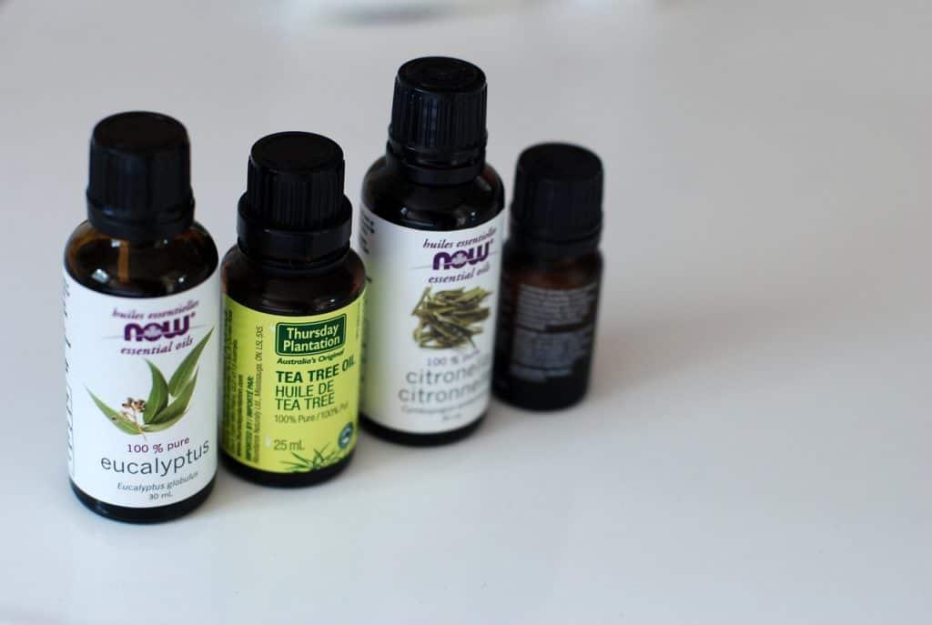 Kräuter und ätherische Öle als Insektenschutz