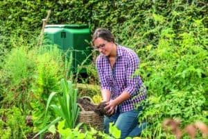 Schöner Garten trotz Trockenheit